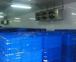速冻间安装工程
