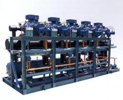DM-10-010-06-螺杆式并联机组